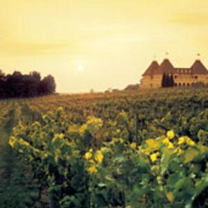 chateau-elan-winery-resort